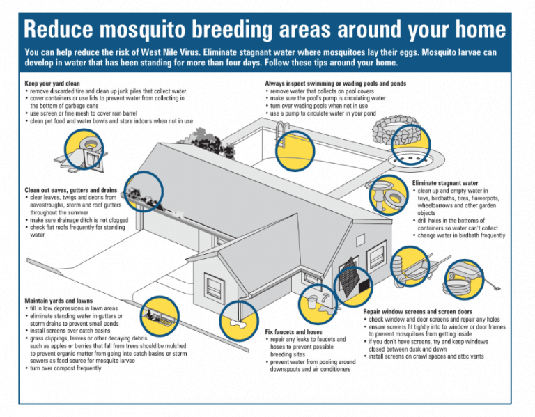 diagram of how to prevent mosquito breeding